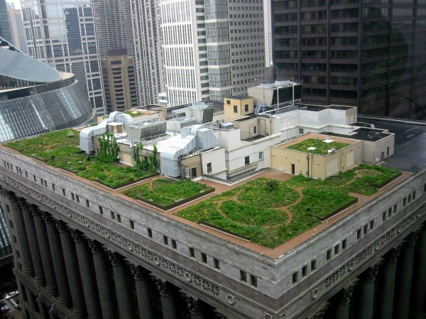 City Hall Green Roof, Chicago, Illinois